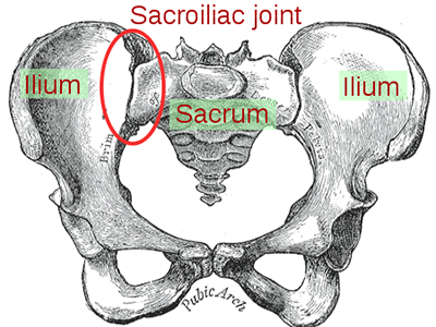 Sacroiliac joint pain doctor orlando