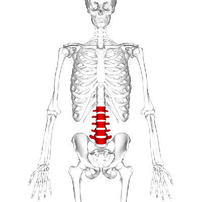 lumbar radicular pain