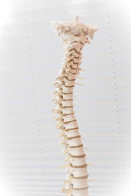 back pain treatment dr phillips